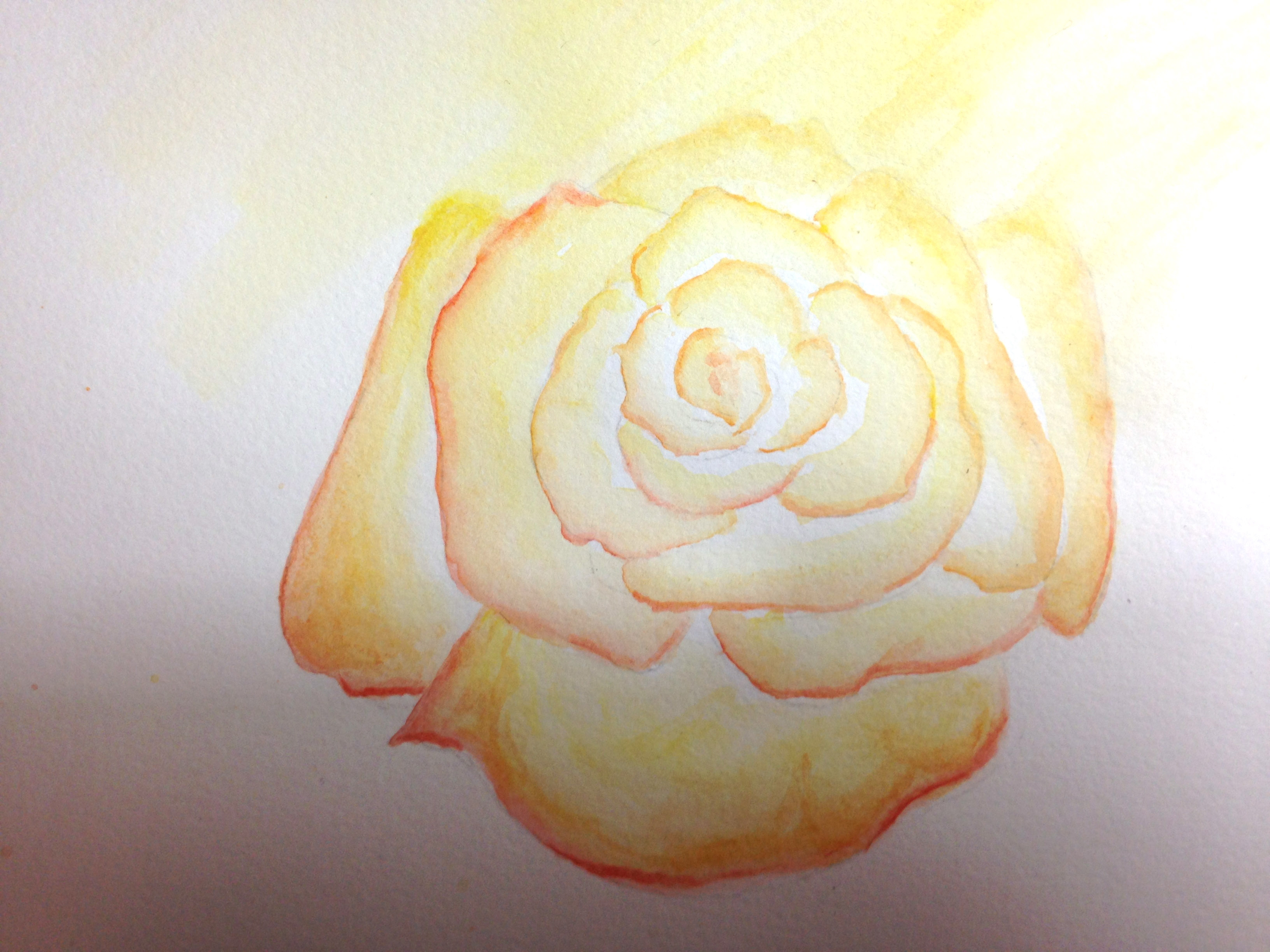 lighted rose